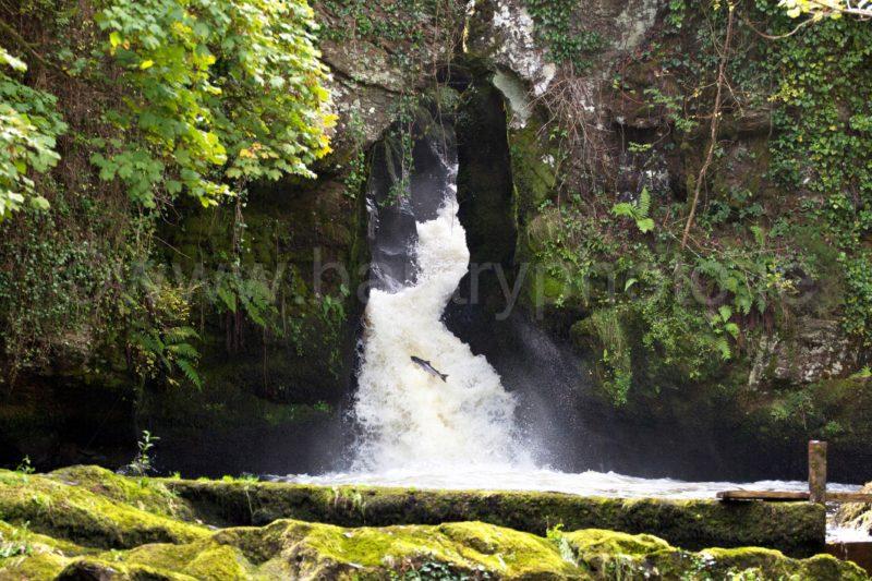 Donemark Falls