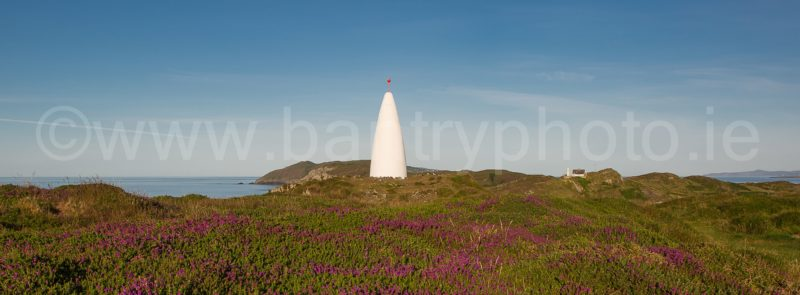 The Beacon In Bloom